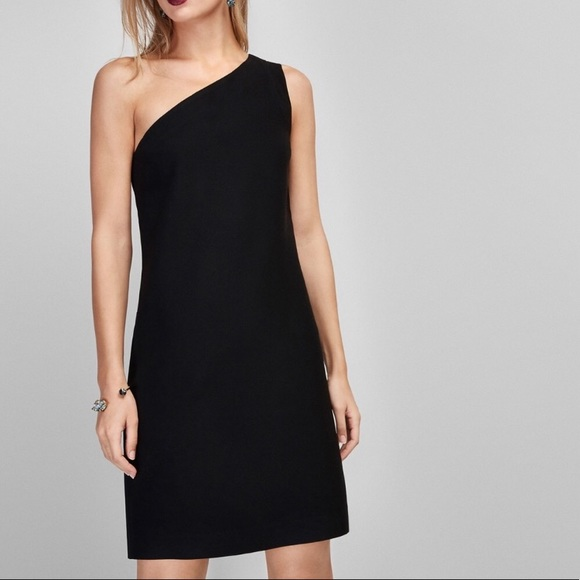 bb7336170905 NWT Aritzia Massimo Dutti One Shoulder Dress